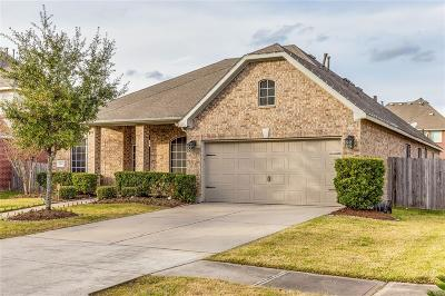 Sugar Land Single Family Home For Sale: 3810 Sawyer Bend Lane