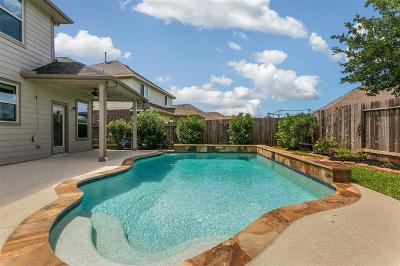 Tomball Single Family Home For Sale: 18902 Pinewood Point Lane