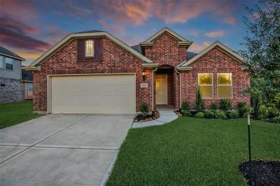 Pearland Single Family Home For Sale: 3202 Keller