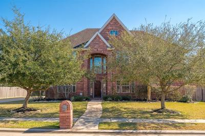 Single Family Home For Sale: 705 Falcon Lake Drive
