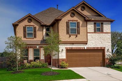 Magnolia Single Family Home For Sale: 10031 Cimarron Canyon Lane