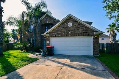 Houston Single Family Home For Sale: 16710 New Market Lane