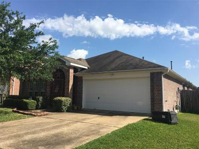 Houston Single Family Home For Sale: 13715 Audra Lane