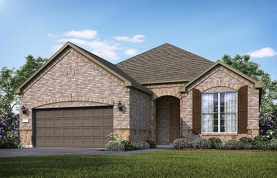The Woodlands Single Family Home For Sale: 396 Connemara