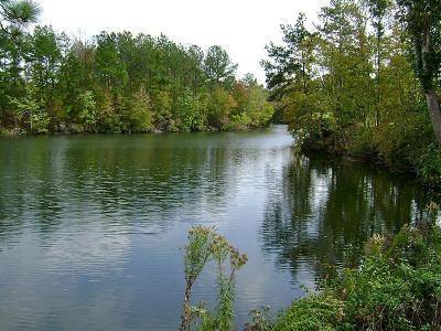 Residential Lots & Land For Sale: 47 Deer Ridge