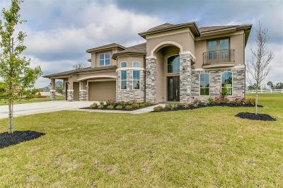Conroe Single Family Home For Sale: 12042 White Oak Ranch Drive
