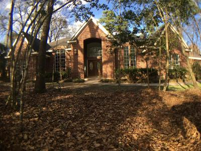 Spring Single Family Home For Sale: 7 Red Sable Point Point