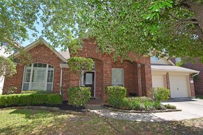 Tomball Single Family Home For Sale: 22410 Serrano Lake Court