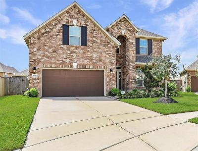 Pearland Single Family Home For Sale: 1905 Willow Chase Lane