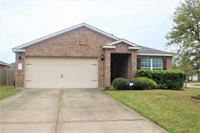 Rosharon Single Family Home For Sale: 9402 White Diamond Lane