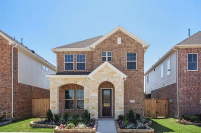 Fort Bend County Single Family Home For Sale: 27019 Keystone Brook
