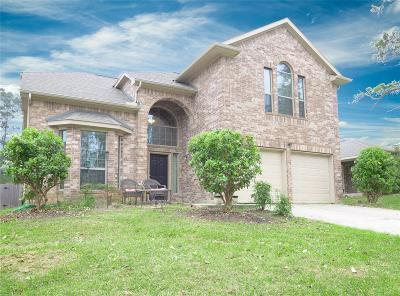 Single Family Home For Sale: 13417 Raintree Drive