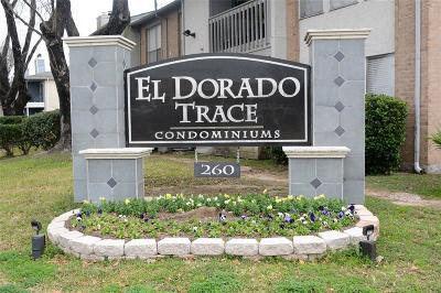 Houston Condo/Townhouse For Sale: 260 El Dorado Boulevard #704
