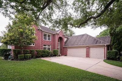 Katy Single Family Home For Sale: 22507 Stormcroft Lane