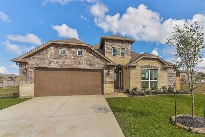 Katy Single Family Home For Sale: 4606 Clara Rose Lane