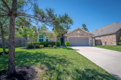 Houston Single Family Home For Sale: 13723 Windsor Garden Lane