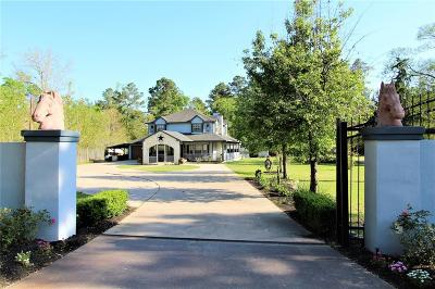 Conroe Single Family Home For Sale: 1510 Pinewood Plaza Drive