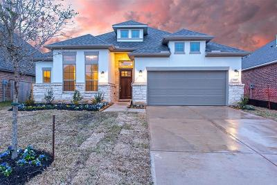 New Caney Single Family Home For Sale: 18949 Columbus Mills Drive