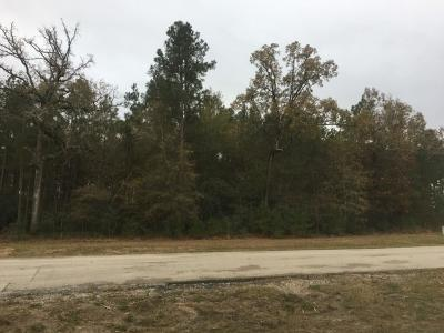 Spring Residential Lots & Land For Sale: 27538 Hunter Creek Court