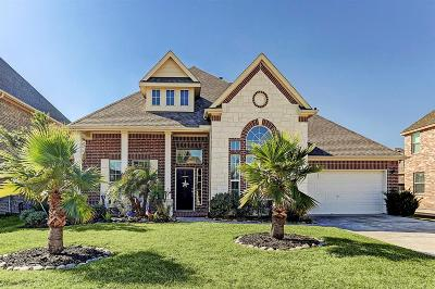Friendswood Single Family Home For Sale: 1121 E Hickory Terrace