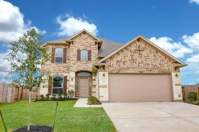 League City Single Family Home For Sale: 3102 Sunrise Hill Lane