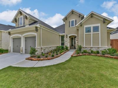 Single Family Home For Sale: 3415 Dover Valley Drive