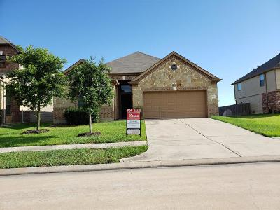 Single Family Home For Sale: 16410 Williamstown Drive