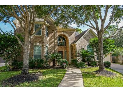 Houston Single Family Home For Sale: 203 Jewel Park Lane