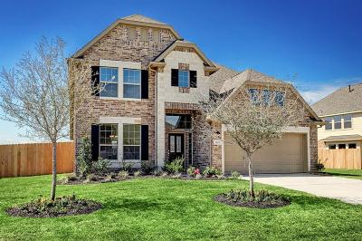Friendswood Single Family Home For Sale: 1125 Deer Valley Drive
