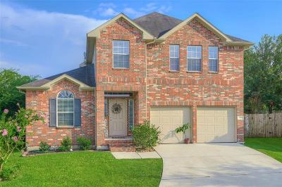 Conroe Single Family Home For Sale: 10 Summer View Court