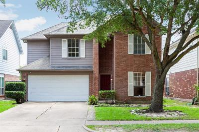 Galveston County, Harris County Single Family Home For Sale: 12031 Pine Meadow Drive