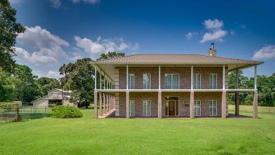 Conroe Farm & Ranch For Sale: 12241 Nicholson Road