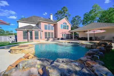 Friendswood Single Family Home For Sale: 714 Hidden Woods Lane