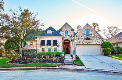 Augusta Pines, Augusta Pines - Lago Woods, Augusta Pines - Shadow Creek, Augusta Pines - The Creeks, Augusta Pines 02, Augusta Pines Lago Woods, Augusta Pines Sec 02, Augusta Pines Sec 03, Augusta Pines Sec 05, Augusta Pines Sec 07 Single Family Home For Sale: 25503 Long Iron Court