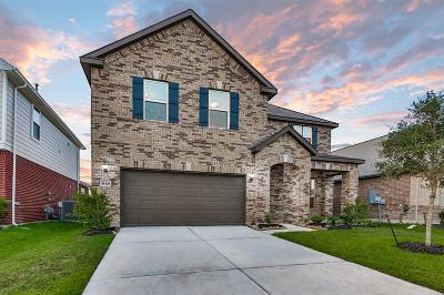 Fort Bend County Single Family Home For Sale: 14109 Carlisle Hollow Trail