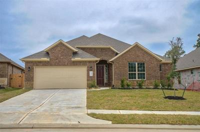 Conroe Single Family Home For Sale: 14149 Emory Peak Court