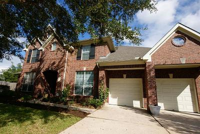 Friendswood Single Family Home For Sale: 1950 Skip Rock Street