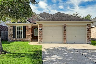 Manvel Single Family Home For Sale: 21 N Signal Hill Drive