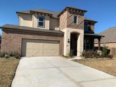 Tomball Single Family Home For Sale: 9610 Three Stone Lane