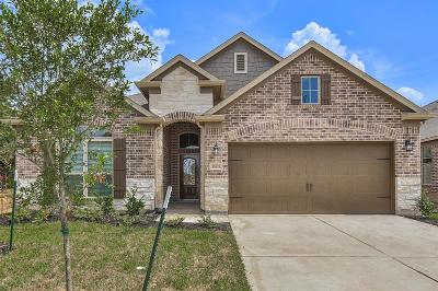 Houston Single Family Home For Sale: 18519 Gardens End Lane