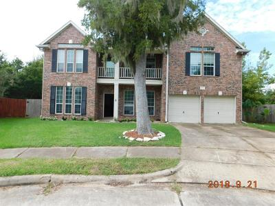 Sugar Land Single Family Home For Sale: 8003 Spring Bluebonnet Drive