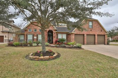Pearland Single Family Home For Sale: 5601 Walker Drive