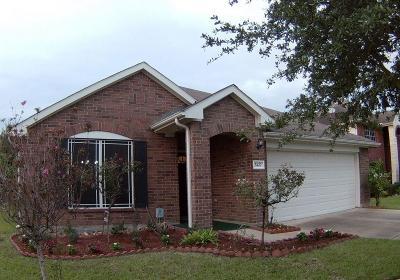 Baytown Single Family Home For Sale: 5427 Cinnamon Lake Drive