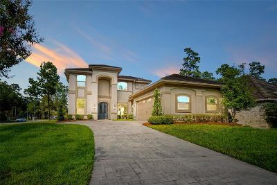 Houston Single Family Home For Sale: 16030 Fawn Vista