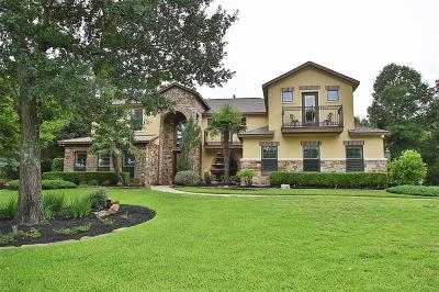 Montgomery Single Family Home For Sale: 11612 Princess Ann Court