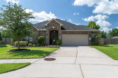 Pearland Single Family Home For Sale: 2502 Spring Landing Drive