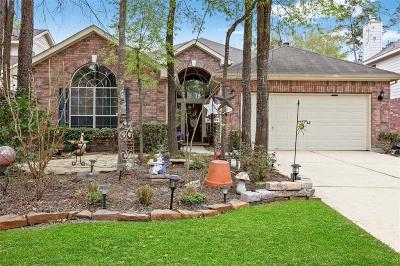 The Woodlands Single Family Home For Sale: 31 Raindance Court