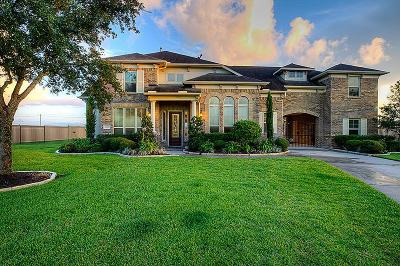 League City Single Family Home For Sale: 3855 Summer Manor Drive
