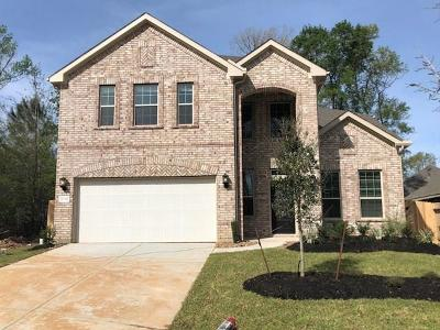 New Caney Single Family Home For Sale: 18918 Sorrento Point Drive