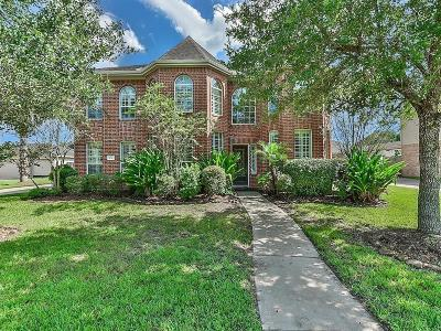 Friendswood Single Family Home For Sale: 1010 High Ridge Drive